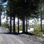 Bikerin im schneebedeckten Araukarienwald in Chile