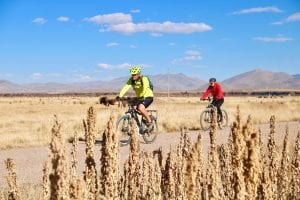 Radfahrer auf dem Weg durch die peruanische Hochebene vorbei an Quinoafeldern