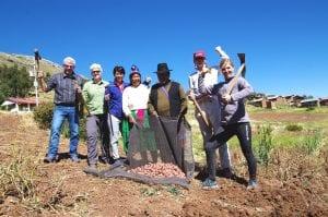 Unsere Peru-Reisegruppe zusammen mit Einheimischen bei der Kartoffelernte auf den Feldern am Titicacasee