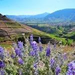 Eine wunderschöne Landschaft Arequipa - Huanca