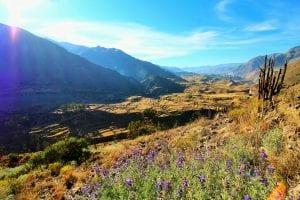 Wanderung mi ttoller Aussicht auf den Colca Canyon