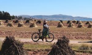 Peruanerin mit ebike lachend unterwegs in den Kartoffelfeldern entlang des Titicacasees