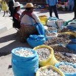 Marktstand mit Kartoffelsäcken unterschiedlicher Sorten, an dem 2 Marktfrauen sitzen