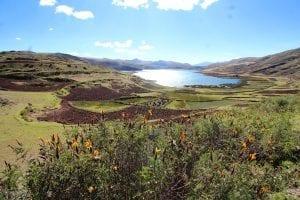 Lagune im grünen Tal / Hintergrund aus einer Anhöhe mit Blumen im Vordergrund