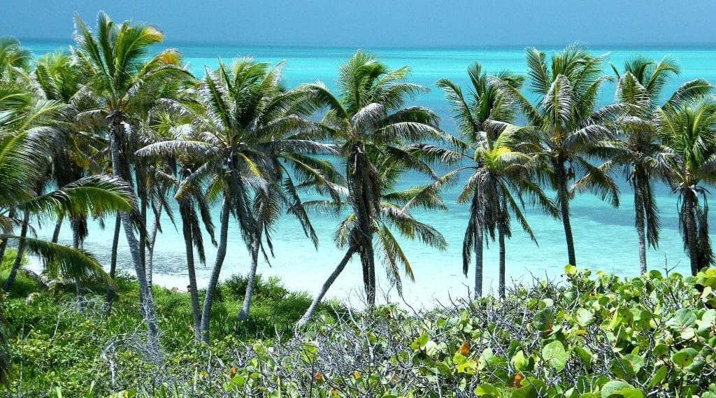 Palmen & Meer - Isla Contoy
