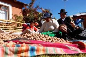 geerntete Kartoffeln auf einem Haufen, Foto mit Reisegruppe und Gastfamilie in Luquina Chico