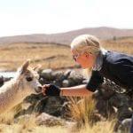 Begegnung zwischen eBikerin und Alpaka