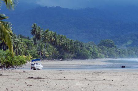 verlassener Strand mit Palmen im Marino Ballena Nationalpark