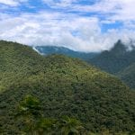 bewaldete Hügel im Braulio Carillo Nationalpark